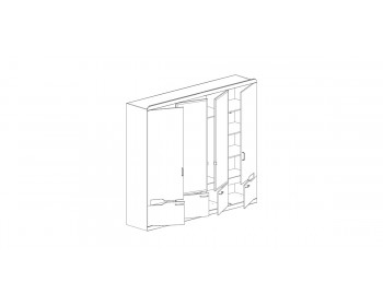 Шкаф для одежды РОНДА 321